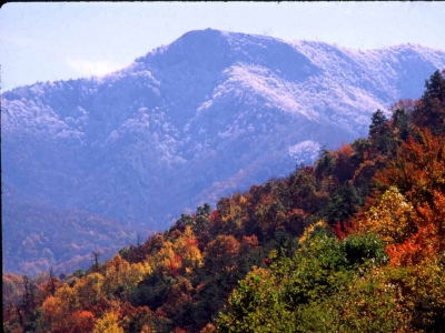 Mt. Cammerer Fall/winter