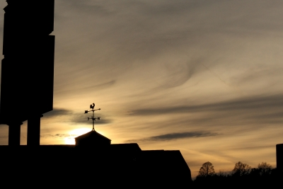 Silhouettes Against The Sunset