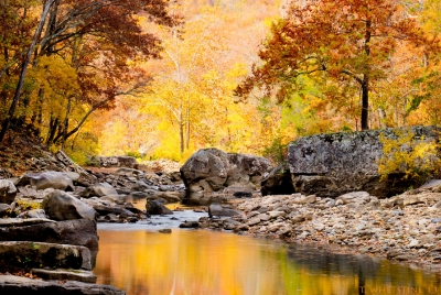 Colors Of The Creek