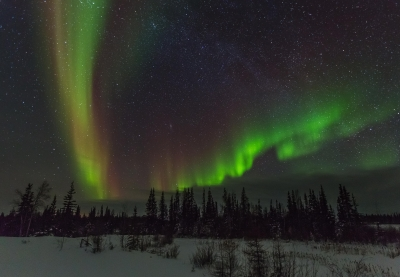 A Shot In The Dark.. The Northern Lights