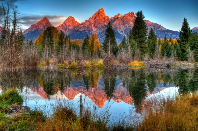 Autumn Morning In Grand Teton National Park