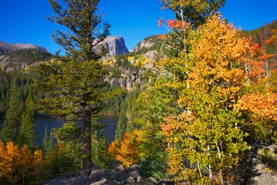 Hallet's Peak And Autumn Colors