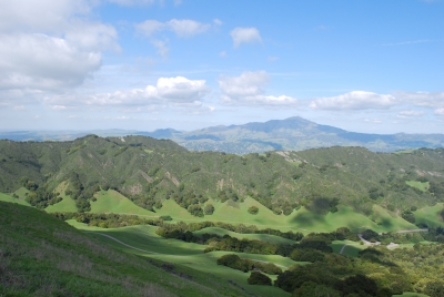 Mount Diablo From Las Trampas