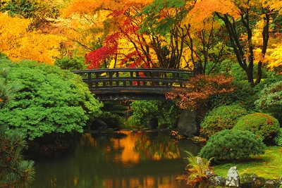 Portland Japanese Garden In Autumn