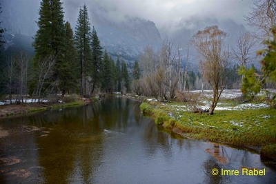 Merced River In Mist