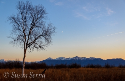Moonrise Over The Kenai