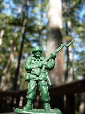 Toy Soldier On A Tree Path