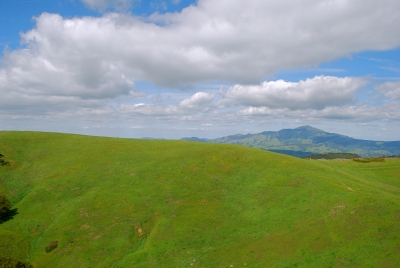 Mount Diablo View