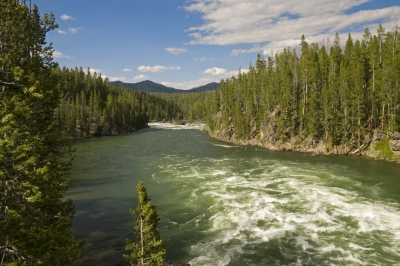Yellowstone River 1