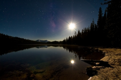 Moonlit Reflection