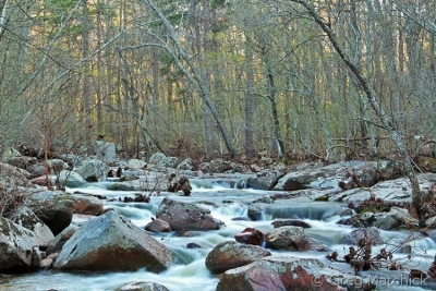 Early Spring On Pickle Creek