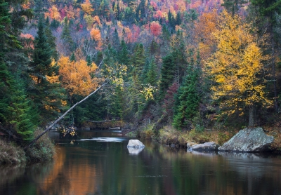 Ausable Fall Splendor