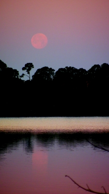 Morning Moon On River