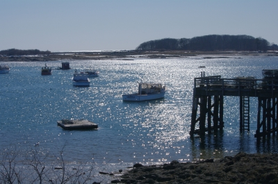 Early Spring In Cape Porpoise