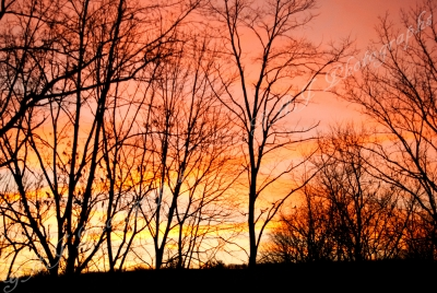 Sunset In Athens, Pa