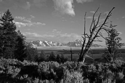 Grand Tetons From The Snake River Overlook