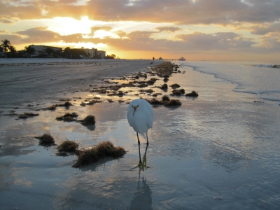 Sunrise At Fort Meyers Beach