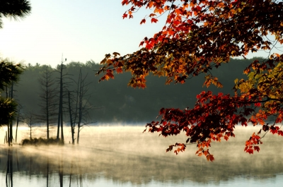 October Morning On Loon Lake