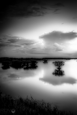 Stillness Before The Storm-hic-b&w