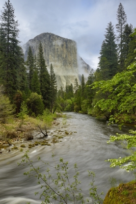 Springtime In Yosemite