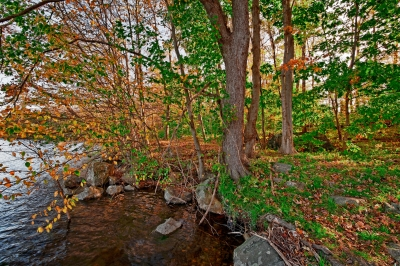 Fall, Trees, Ground, Reservoir, Water, Hdr