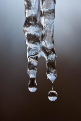 Dripping Icicle #1