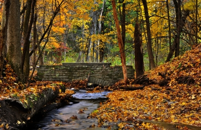 The Stone Bridge And Fall Colors