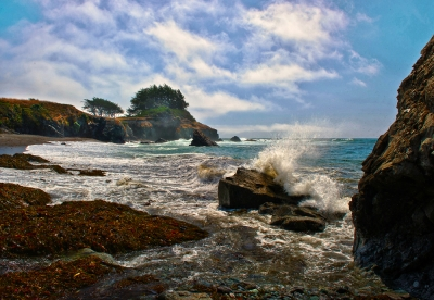 Afternoon At Pebble Beach (sea Ranch, Ca)