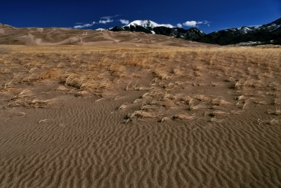 Desert Ripples In Great Sand Dunes National Park