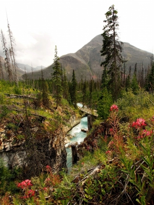 Mysterious Marble Canyon