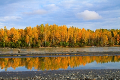 Big Susitna Reflection