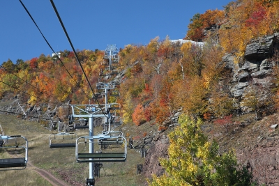 Fall Color From High Up