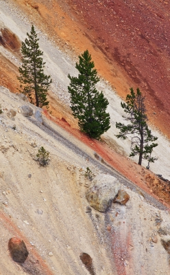 The Colors Of Yellowstone's Grand Canyon