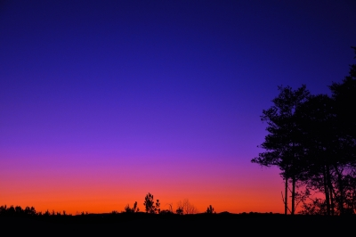 Colorful Evening