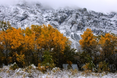First Snow In Glacier National Park.