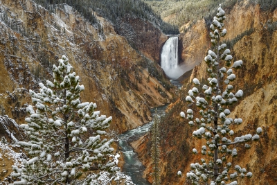 Snowfall At Yellowstone Falls