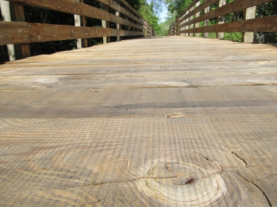 Circle In The Wooden Path