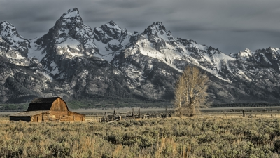 Barn Dwarfed By Tetons