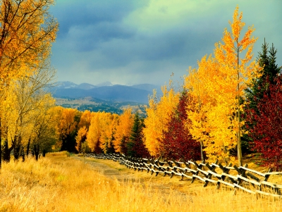 Autumn Colors And The Coming Storm