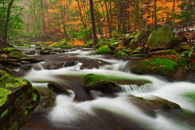 Pennsylvania, Poconos, Fall Colors, Foliage, Broadhead Creek