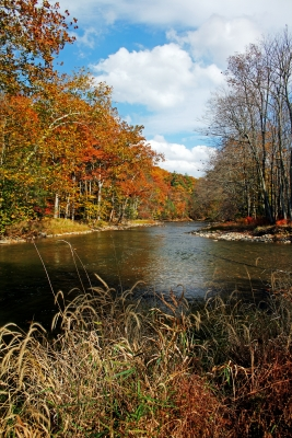 Penns Creek October 2012
