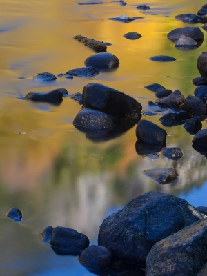 Reflections On The Ausable