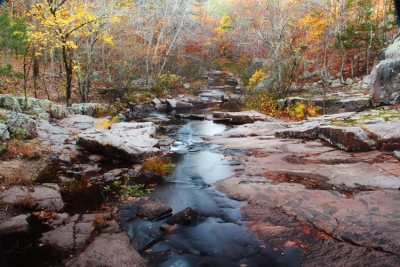 Pickle Creek In Late Autumn