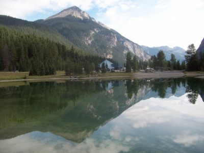 Relections In Field, B.c. Pond