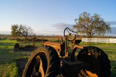 Old Tractor At Rush Ranch