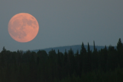 Full Moon Over Yellowstone