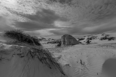 Alien Landscape #1 – White Sands