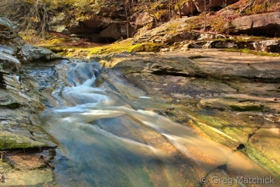 Soft Cololrs Of Piney Creek Ravine