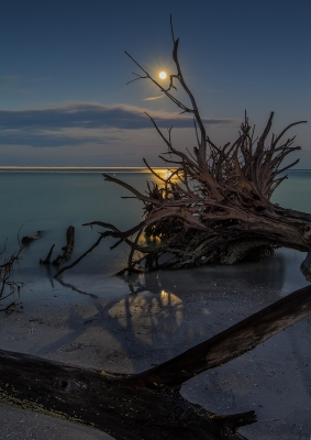 Moonlight On The Beach – Color