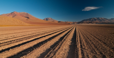 Tire Tracks In The Atacama Desert
